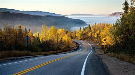 1920x1080 Autumn Forest Road & Misty desktop PC and Mac ...