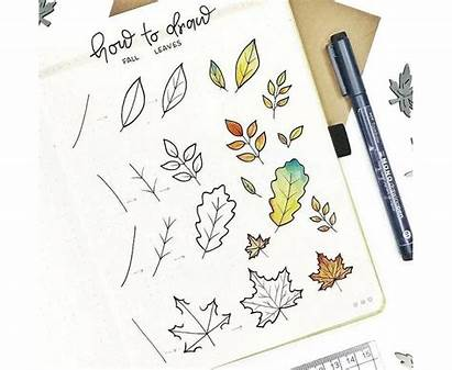 Draw Step Journal Bullet Notebooktherapy Doodle Notebook
