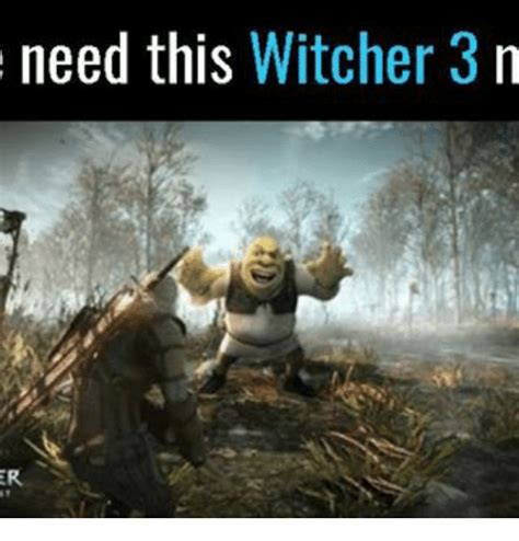 Witcher 3 Memes - need this witcher 3 n meme on sizzle