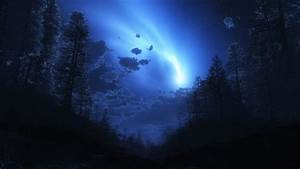 Night forest fog sky wallpaper | 1920x1080 | 348215 ...