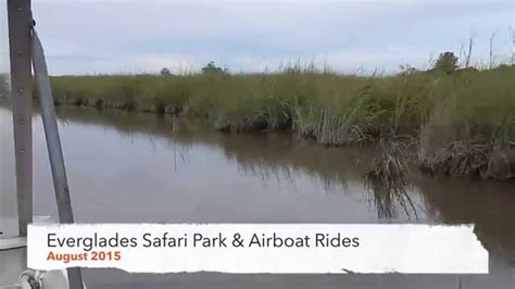 Youtube Airboat Rides Everglades by Everglades Airboat Ride Youtube