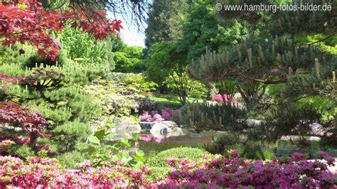 Japanischer Garten Planten Und Blomen by Planten Un Blomen Bilder Teil 2
