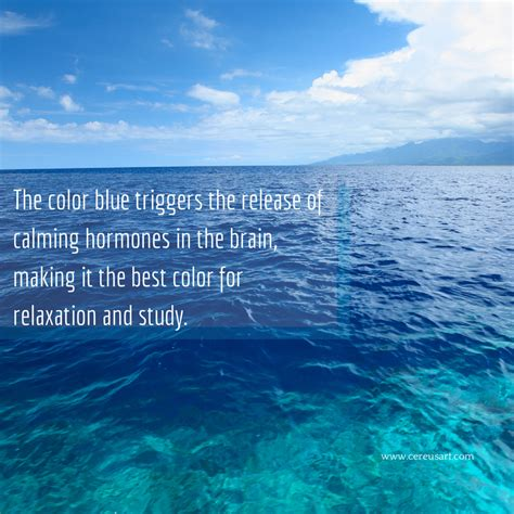 quotes beach sayings soothing ocean calming relaxing quote relaxation quotesgram hormones saying brain favorite funny cereusart cool
