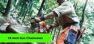 Best 18 Inch 2 Stroke Gas Chainsaws – Reviews and Buyers ...