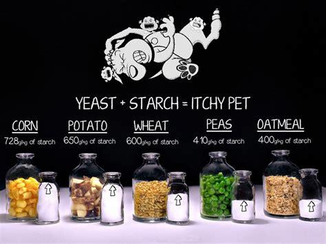 Silvieon From Dogsnaturally  Ee  Grain Ee    Ee  Free Ee    Ee  Dog Ee    Ee  Foods Ee
