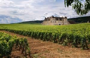 Burgundy Wine Region France