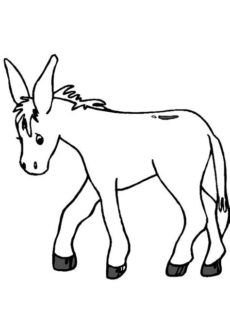donkeys coloring pages coloring home