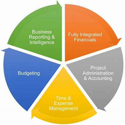 Management Financial Business Process Automobile Companies Industry