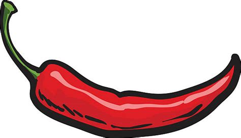 chili pepper clipart royalty free chili pepper clip vector images