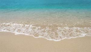Jellyfish Safe | Tropical North QLD