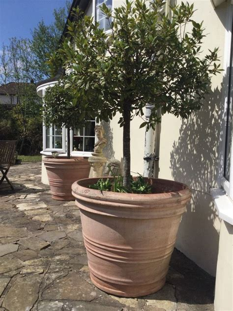 large outdoor planters planters interesting planters outdoor
