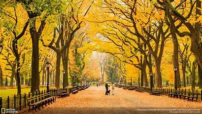 Central Park Autumn York National Geographic Fall