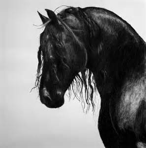 Charcoal Horse Drawings Black and White