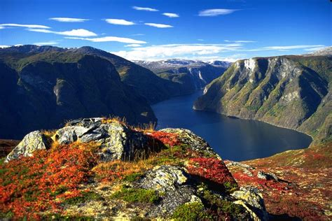 Hear See Bergen Norway
