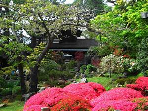 Japanischer Garten Pflanzen : japanischer garten foto bild pflanzen pilze flechten b ume blatt bl te bilder auf ~ Markanthonyermac.com Haus und Dekorationen