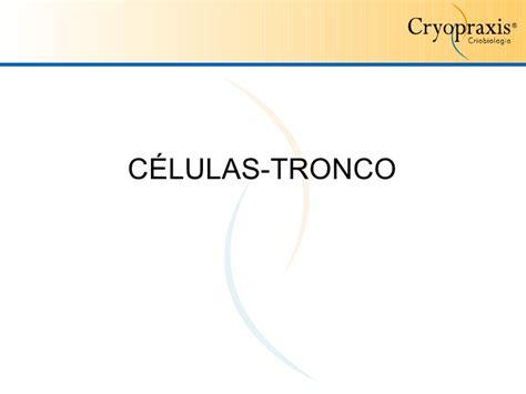 baixar ppt em celulas tronco apresentação