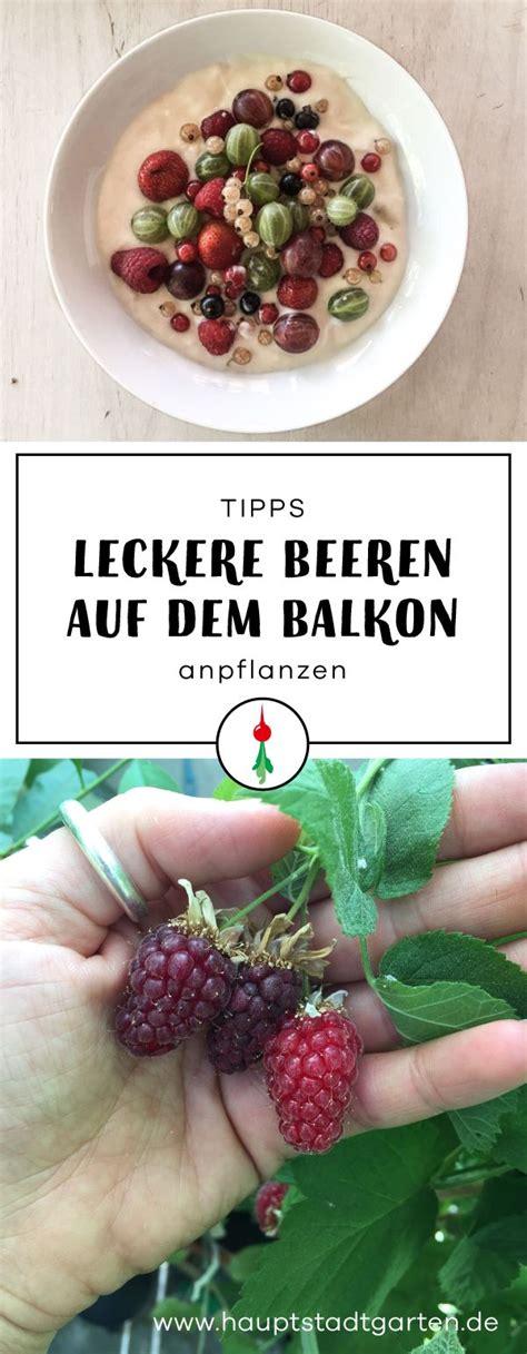 Balkon Pflanzen, Hilfreiche