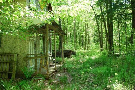 terre boisee a vendre cleveland estrie superbe terre 224 bois 224 vendre 62 arp grange 2 cs de chasse ruisseau