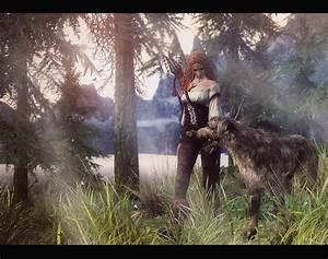 Forest, Walk, At, Skyrim, Nexus