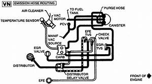 Need Diagram To Replace Vacuum Lines On A 1981