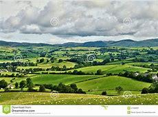 Pastoral Scene Of Lush Green English Farmland Stock Image