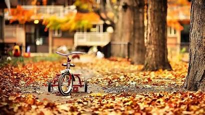 October Fall Wallpapers Background Desktop Backgrounds Nature
