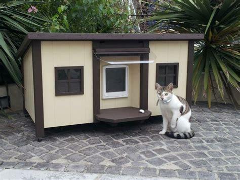 les 25 meilleures id 233 es de la cat 233 gorie abri pour animaux sur chiens de refuge