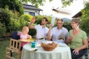 Was Tun Gegen Wespen : mittel gegen wespen was tun bei einer wespenplage ~ Whattoseeinmadrid.com Haus und Dekorationen