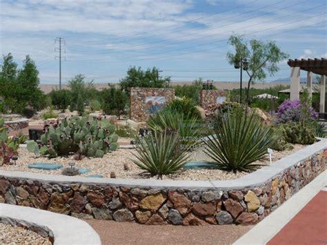 cactus  succulent garden el paso desert botanical