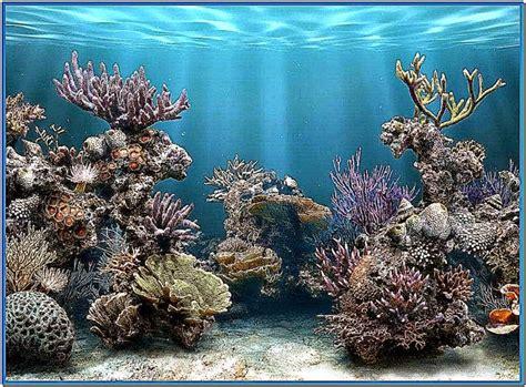 Fish Aquarium Wallpaper Animated - 3d animated aquarium wallpaper wallpapersafari