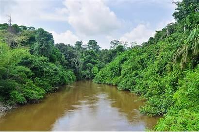 Congo River Africa Dr Wonders Bank Jbdodane