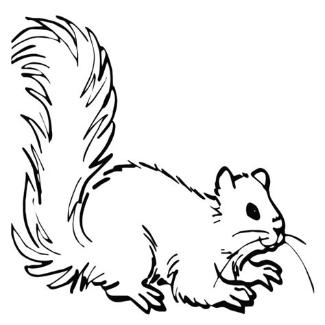 disegni da colorare animali disegni da colorare di animali e piante l idea migliore e