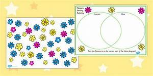 Venn Diagram Flower Sorting Activity