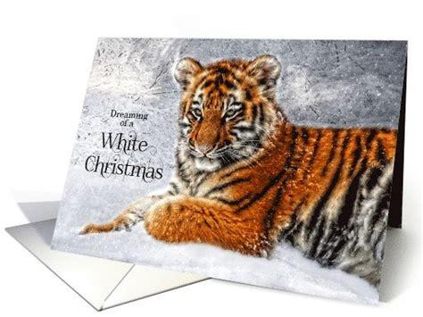28 Best Shop Wildlife Greeting Cards Images On Pinterest