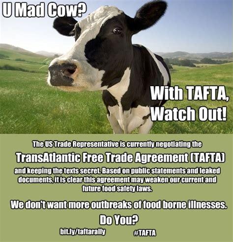 Mad Cow Disease Meme - mad cow memes