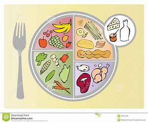 New Food Guide Plate Portions Stock Vector