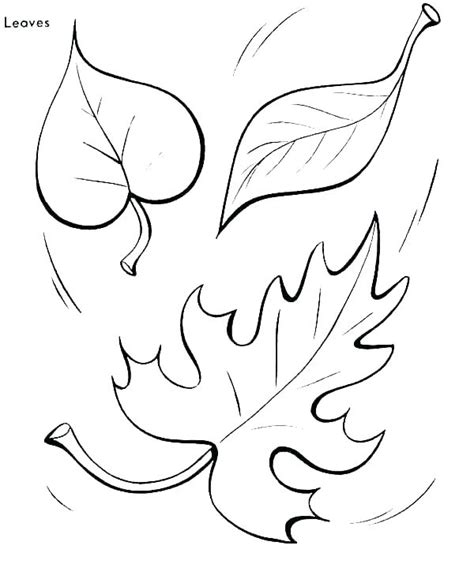 leaf coloring pages for preschool at getcolorings 542 | leaf coloring pages for preschool 13