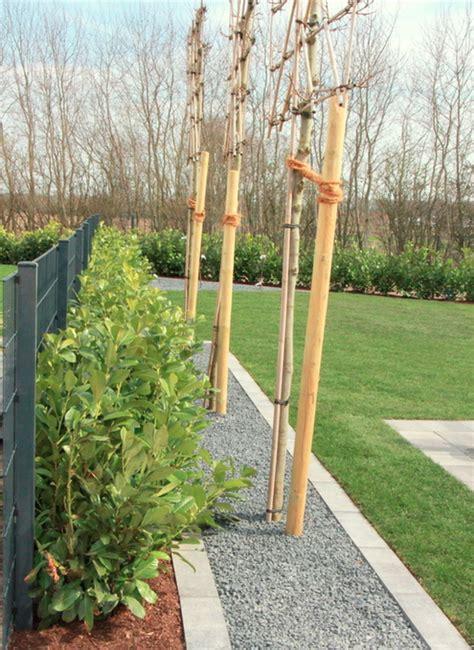 Garten Landschaftsbau Zukunft by Baum Und Pflanzenpflege Garten Landschaftsbau M 252 Nster