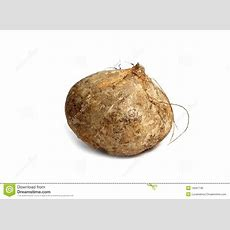 Jicama Yam Bean Mexican Food Vegetable Stock Image