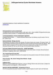 Bozeman Science Biogeochemical Cycles Worksheet Answers
