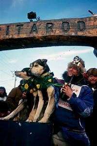 Libby Riddles U0026 39  Iditarod Victory
