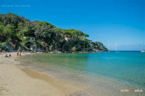 Appartamenti Procchio Isola D Elba spiaggia di procchio all isola d elba a marciana