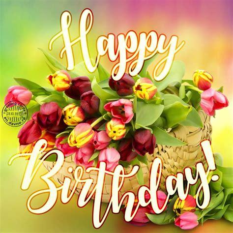 happy birthday tulips greeting card   davno