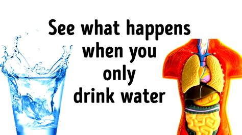 What Would Happen If You Replaced All Drinks With Water