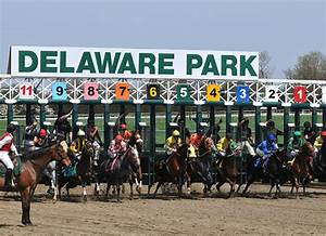 Horse Swindle Allegations Earn Delaware Trainer One-Year ...