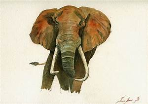 Elephant Painting Painting by Juan Bosco