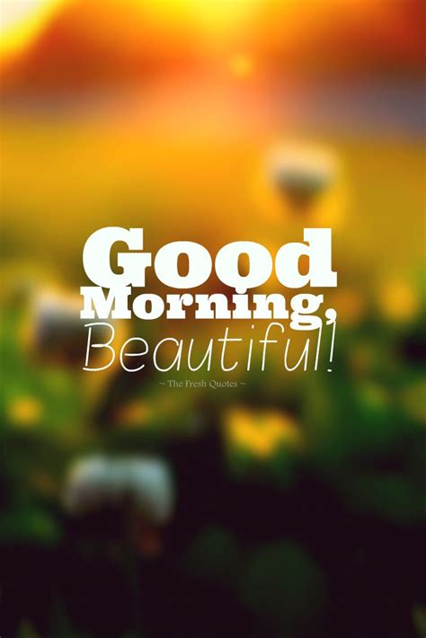 cute romantic good morning wishes images stuff  buy