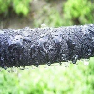 Gewächshaus Bewässerung Mit Regenwasser : gew chshaus bew sserung damit wird ihnen die arbeit erleichtert ~ Watch28wear.com Haus und Dekorationen