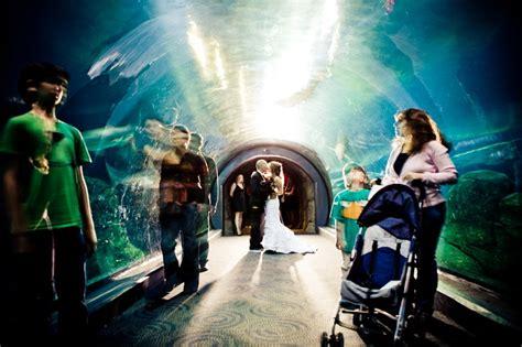 camden aquarium hours go search for tips