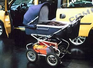 Kinderwagen Für 2 Kinder : kinderwagen wikipedia ~ Yasmunasinghe.com Haus und Dekorationen